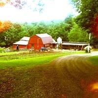 Rocky Ridge Beef Farm