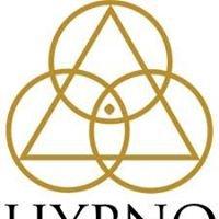Hypno Healing Institute
