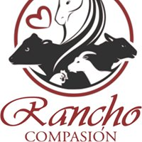 Rancho Compasión, a farmed animal sanctuary