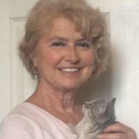 Belmont County Cat Stray Shun
