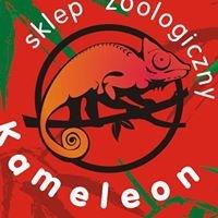 Kameleon