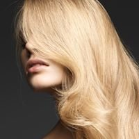 Zone Hair Gallery