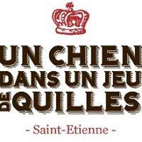 Un Chien dans un Jeu de Quilles Restaurant à Saint-Etienne