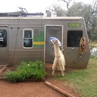 Andonbel Alpaca Farm And Cafe