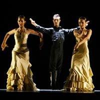 Conservatorio Profesional de Danza de Ribarroja