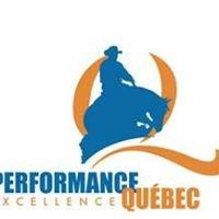 Association Québécoise de Reining