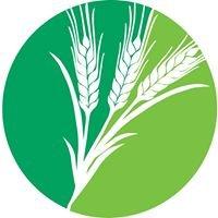 Barleythorpe Primary