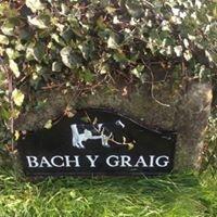 Bach y Graig Farm