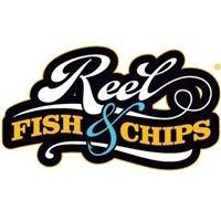 REEL fishandchips