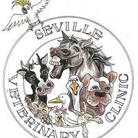 Seville Veterinary Clinic
