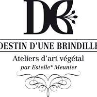 """Estelle Meunier - """" Destin d'une Brindille """""""