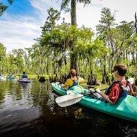 Wild Louisiana Tours