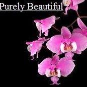 Purely Beautiful