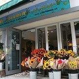 Wilbe Bloomin - Kensington Market's Flower Emporium