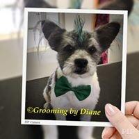 Grooming by Diane