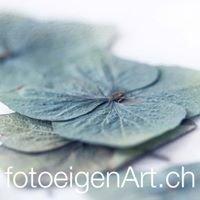 fotoeigenArt.ch