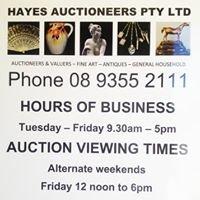 Hayes Auctioneers Pty Ltd