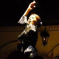 Academia Duende Flamenco