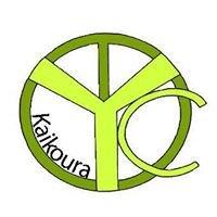 Kaikoura Youth Council