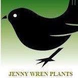Jenny Wren Plants