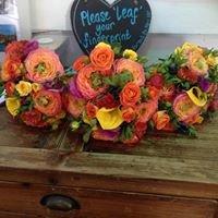 Teasels Florists