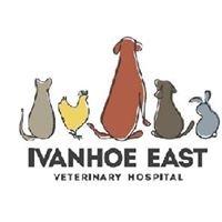 Ivanhoe East Veterinary Hospital