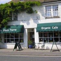 Sharp-Thorne Organic Cafe.