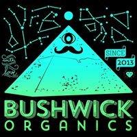 Bushwick Biotech - Kombucha, Kefir, Probiotics Singapore