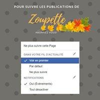 Zoupette (Aurélie DEUX Barbier)