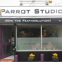Parrot Studio