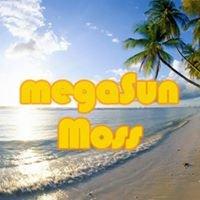 Solstudio megaSun Moss