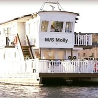 M/S Molly