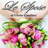 Le Spose di Giulio Gaudiosi