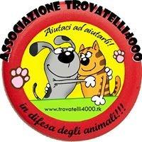 Associazione Trovatelli4000