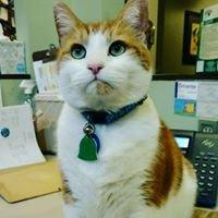 Pickens Animal Rescue Veterinary Hospital