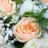 Allium - Flowers & Rustic Charm