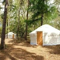 Meadow Yurts