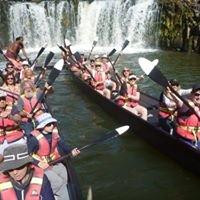 Taiamai Tours Heritage Journeys
