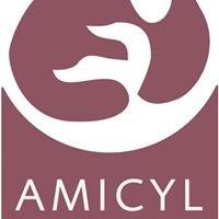 AMICYL · Masaje Infantil Castilla y Leon