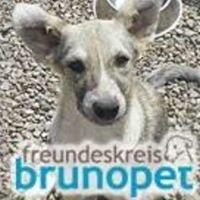 Freundeskreis Bruno Pet e.V.