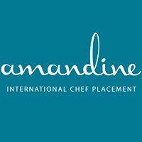 Amandine International Chef Placement