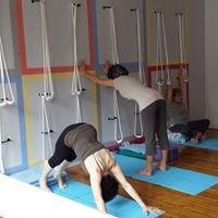 Samamkaya Yoga Back Care & Scoliosis Collective