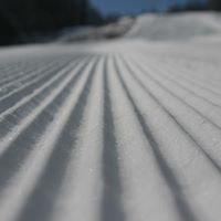 """Partia de ski """"Soimul"""", Gura Humorului"""