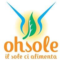 Goji fresco - OhSole