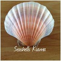 Seashells Kiama