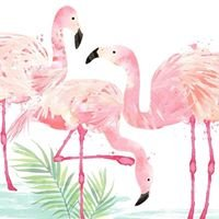 Lesley Raggett - Independent Partner at Flamingo Paperie