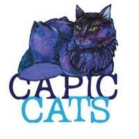 Capic Cats