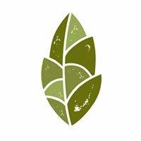 Evergreen Organics