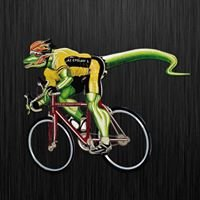 AZ Cyclery and Multisport