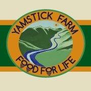 Yamstick (Certified Organic)